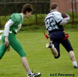american football ligen deutschland