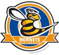 Hanau Hornets