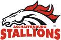Landesschulfinale III Hessen  (c) AFV Hessen