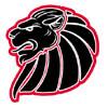 Braunschweig NewYorker Lions